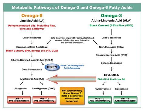 acne & essential fattty acids picture 11