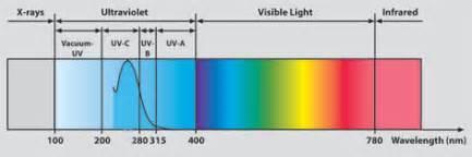 brighteners picture 9