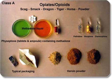 opiate like herbs euphoria picture 1