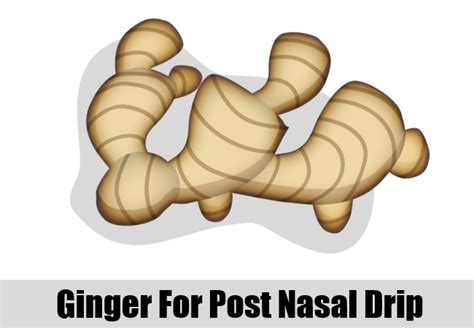 what herbs can stop a post nasal drip picture 5