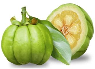 where to buy primalite garcinia cambogis picture 5