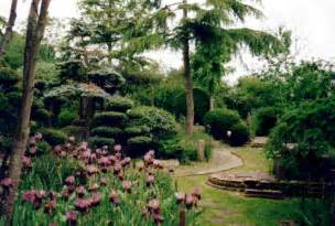 girls playing with boy's penis picture 13