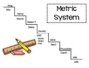 meter muscle system picture 10