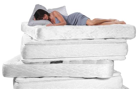 mattress like sleep member picture 2