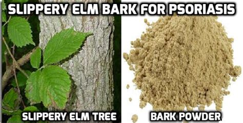 healing benefits of slippery elm bark for vaginal issues picture 4