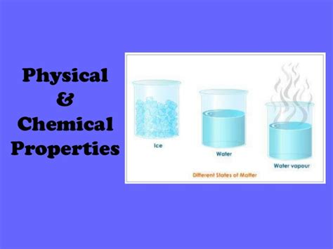 physical and chemical properties of yeast picture 5