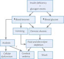 diagram uti+pathophysiology picture 17