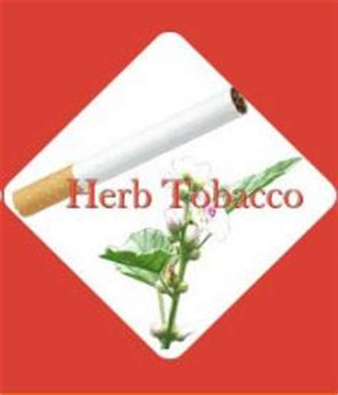 marshmallow and herb cigarettes in austin picture 8