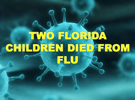 florida flu deaths 2014 picture 10