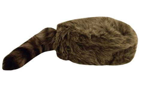 coon skin cap picture 17