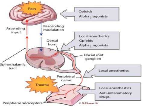 liver disease and itching picture 7