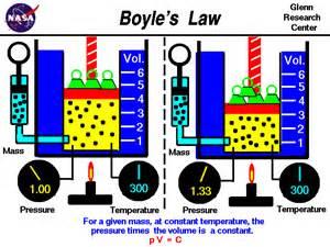 boils law picture 2