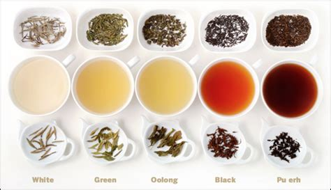 wulong oolong weight loss tea picture 10