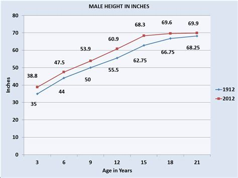 average size for white males picture 12