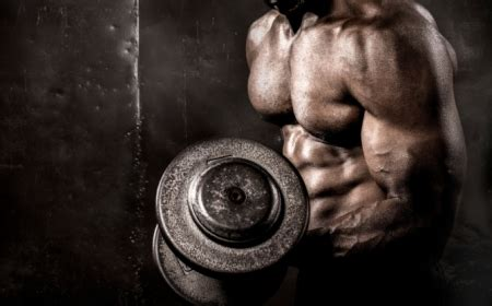 bulk muscle diet and workout picture 10