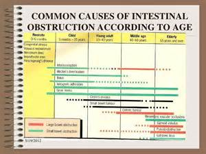 major effects of bowel obstruction picture 10