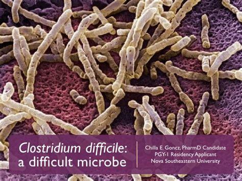 Cdiff colon bacteria picture 4