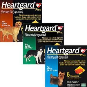 heartgard picture 5