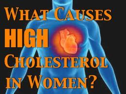 Causes high cholesterol picture 19