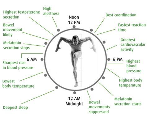 circadian rhythm sleep disorders picture 7