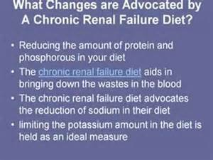 diet plan for one with renal failure picture 2