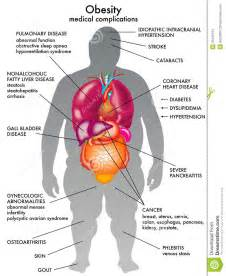 Diet for high cholesterol picture 3