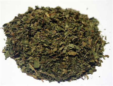 herbs to help with opiate addiction picture 4