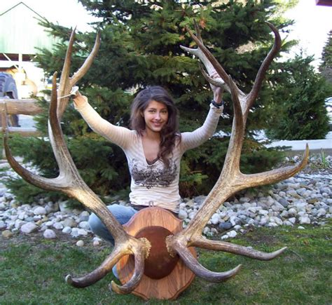 world record world's biggest deer rack picture 5