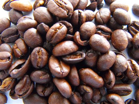 green coffee bean philippines picture 7