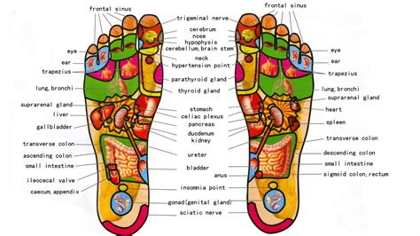 feet message board picture 17