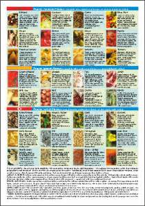 books about the mediterranean diet picture 1