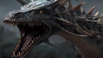 dragon picture 11