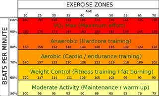 Fat burning zone picture 17