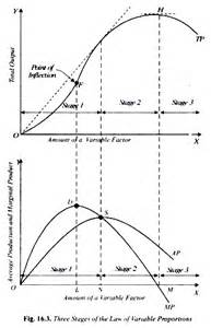 total product curve definition picture 2