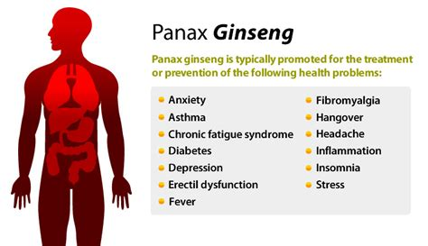 Does ginseng raise or lower blood pressure picture 5