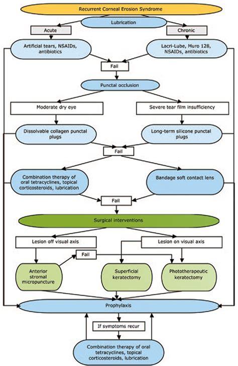 rosacea etiology picture 7