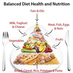 balanced nutritional diet picture 2