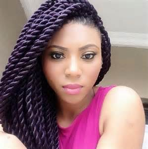 braids and twist hair styles picture 5