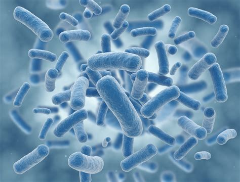 anti microbial picture 1
