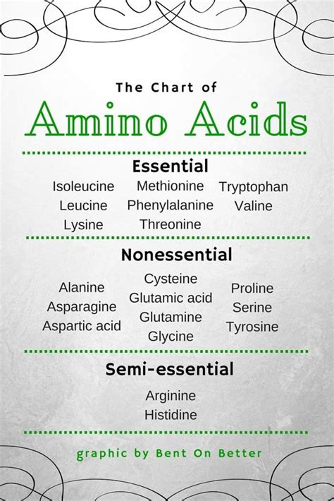 amino acid used to muscle workout picture 10