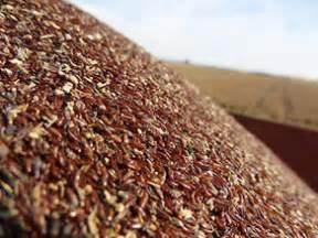 where to buy fibre primvital herb in ghana picture 8