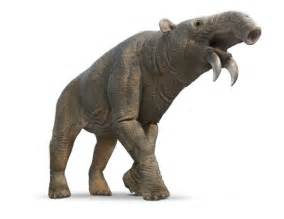 solution for elephant skin picture 10
