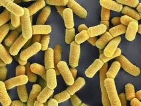 probiotic neck spasm picture 7
