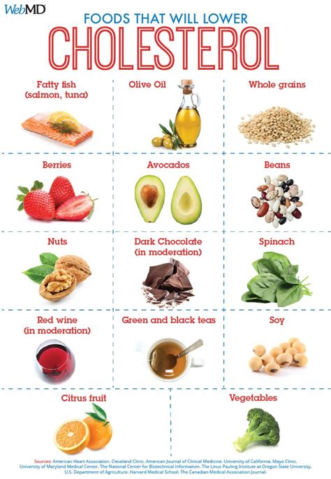 Child low cholesterol diet picture 14