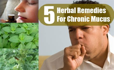 ayurvedic solution to excessive mucus picture 6