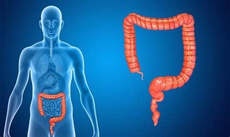 colon cleansing in pictures picture 5
