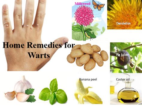 warts herbal care philippines picture 19