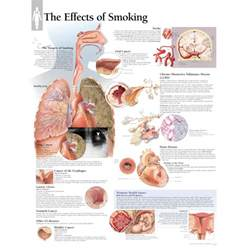 effects of smoking picture 5