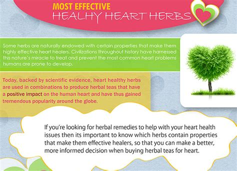herbal medicines that help with blood flow in picture 7