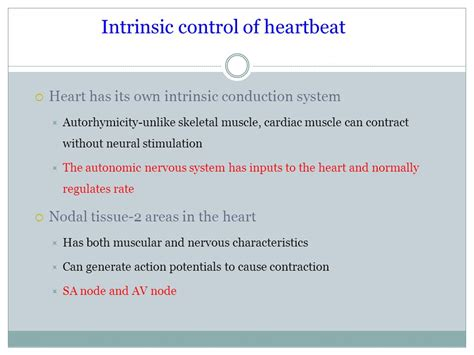 intrinsic and extrinsic muscle control picture 18